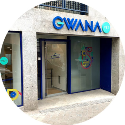 gwana-vet-clinica-animales-exoticos-madrid