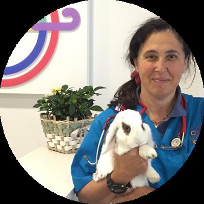 Residencia de conejos y otros animales exóticos
