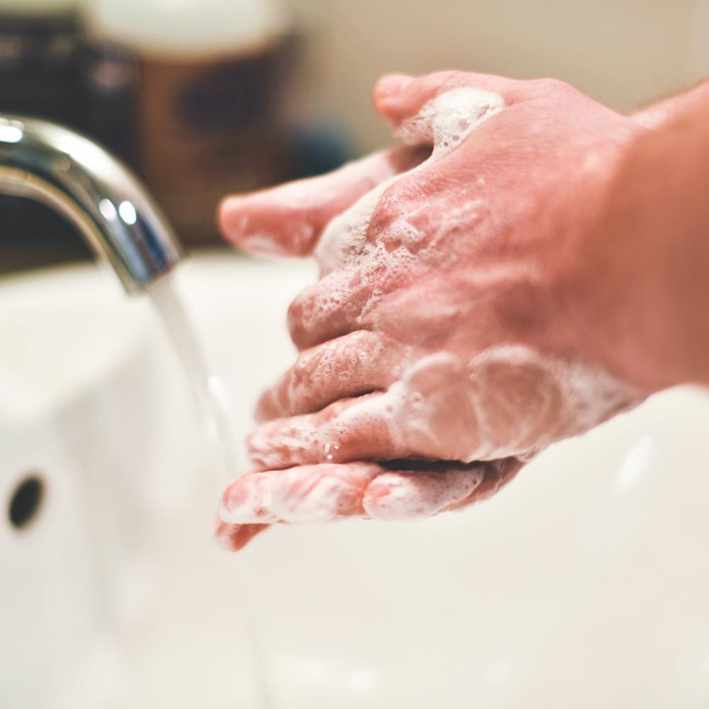 Coronavirus-y-mascotas-higiene-de-manos